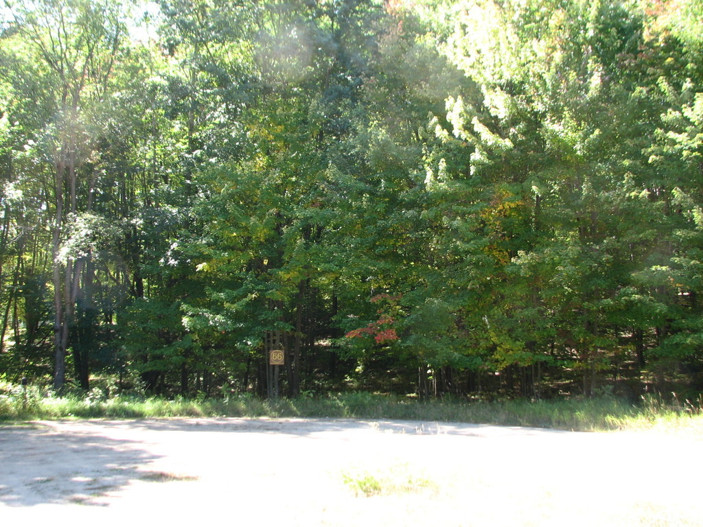 Photo # of Parcel 66, in Rose Lake Township, Osceola County, near Leroy and Tustin, Michigan