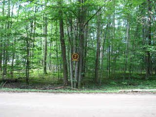 Thumbnail Photo #1 of Parcel 7, in Rose Lake Township, Osceola County, near Leroy and Tustin, Michigan