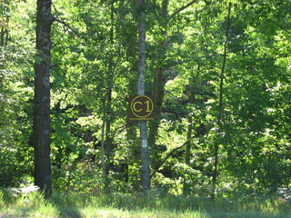 Parcel C1; Land for Sale in Clare County, Michigan 48622